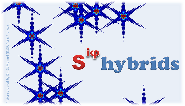 "Workshop ""COHERENT SUPERCONDUCTING HYBRIDS AND RELATED MATERIALS"" 26-29 March, 2018"