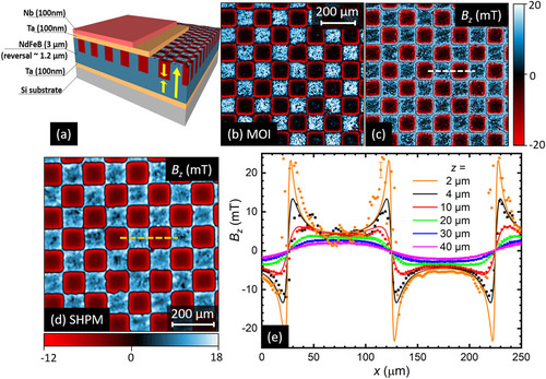 Quantitative Magneto-optical Investigation Of Superconductor/ferromagnet Hybrid Structures