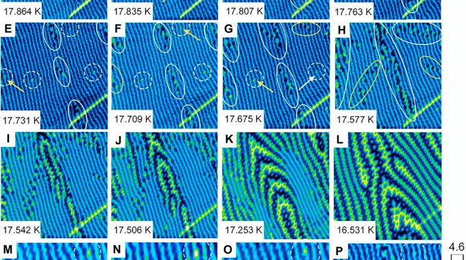 Domain Meissner State And Spontaneous Vortex-antivortex Generation In The Ferromagnetic Superconductor EuFe2(As0.79P0.21)2