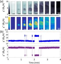 Local View Of Superconducting Fluctuations