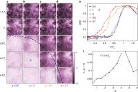 Imaging Quantum Fluctuations Near Criticality