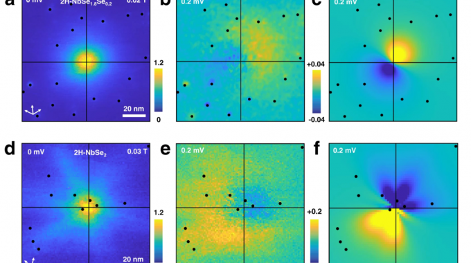 Coherent Coupling Between Vortex Bound States And Magnetic Impurities In 2D Layered Superconductors